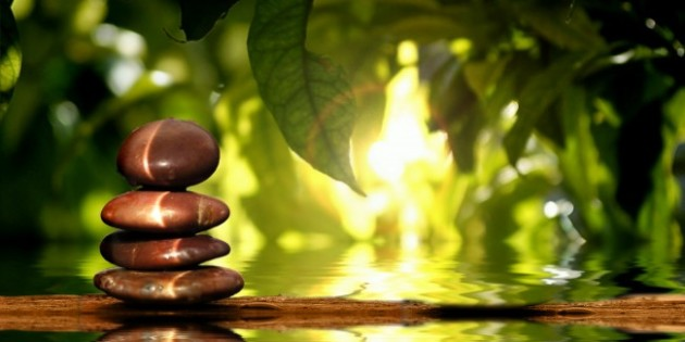 Guided Meditation Experience 5
